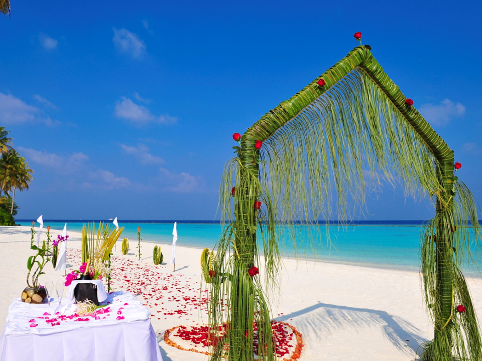 Beach wedding arch ideas beach wedding tips beach wedding arch ideas junglespirit Choice Image