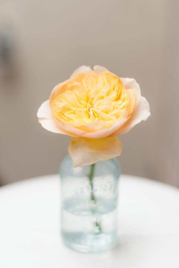 Small jar vase with yellow flower