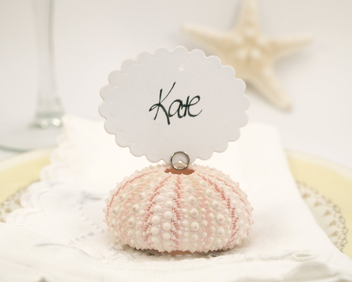 Pastel Pink Shell Place Card