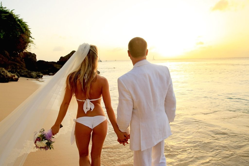 Bikini Wedding Dress 88