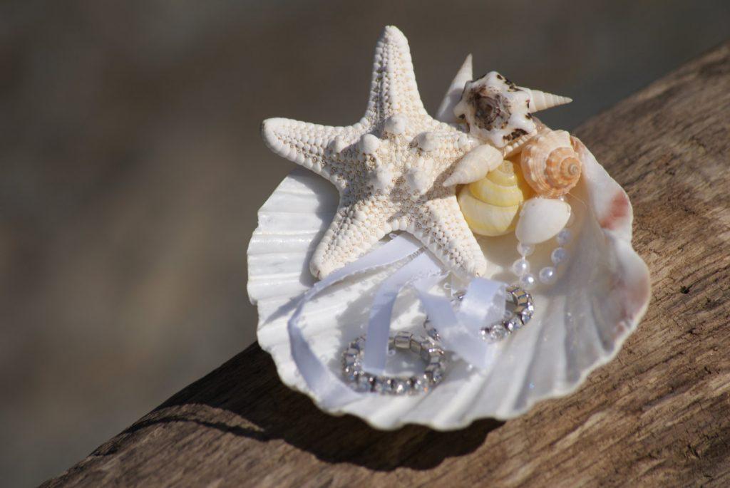 15 Beach Wedding Ring Holders Beach Wedding Tips