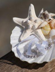 Seashell Ring Holder